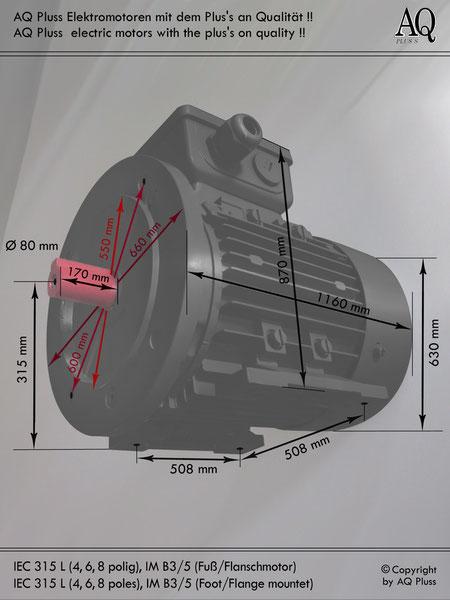 Elektromotor B3/5 Fuß/Flansch-Motor, IEC 315 L ( 4,6 und 8 polige ) diese Baugröße beinhaltet mehrere Leistungen und Drehzahlen.