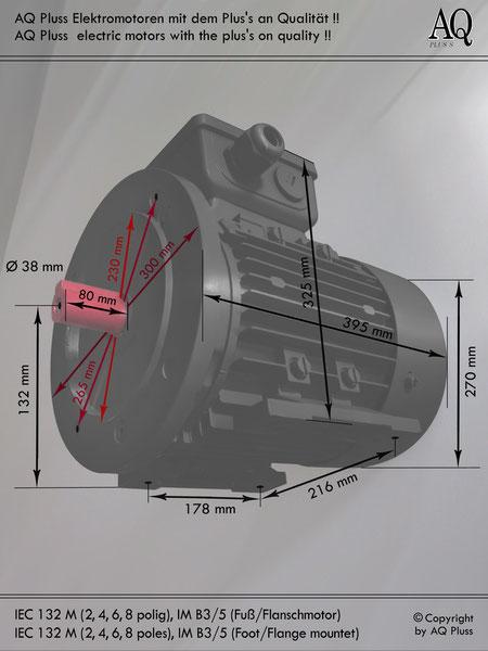 Elektromotor B3/5 Fuß/Flansch-Motor, IEC 132 M diese Baugröße beinhaltet mehrere Leistungen und Drehzahlen.