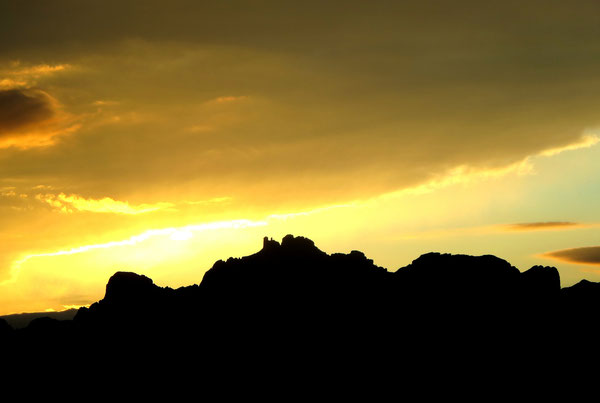 ❦ JOJOGOLD & LIGHT ホホゴールドと光  於: アリゾナ州ハクアハラバレー (撮影 by 渡邊さゆり)