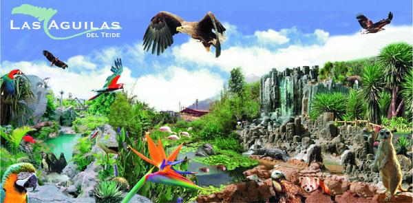 Las Aguila del Teide (Teneriffe)