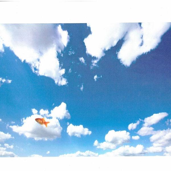 Nubez (Pez soñándose nube), por Laura Barrera. Curso 2014/2015