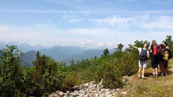Pas de l'Ours - Forêt de Miayra - Randonnée Pyrénées Audoises
