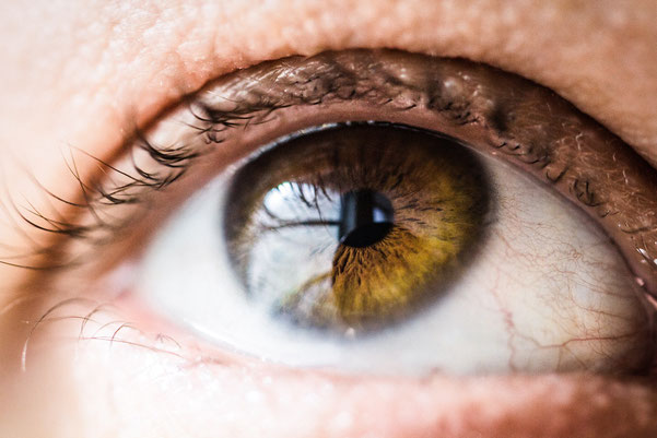 gesundes Auge
