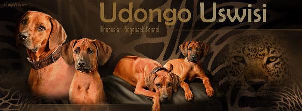 Rhodesian Ridgeback Kennel Udongo Uswisi