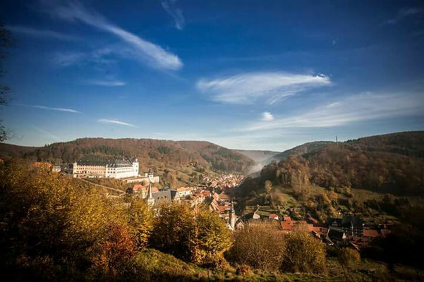 Harz single urlaub