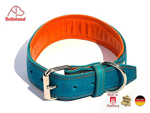 Hundehalsband Leder4 cm breit in türkis mit Polsterung und Futter in der Farbe orange Bolleband