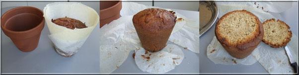 gateau cuit dans pot fleur