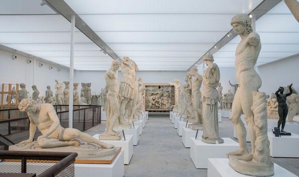 Vue du musée rénové   Ⓒ  Alexis Grattier 2017, université Lumière Lyon 2
