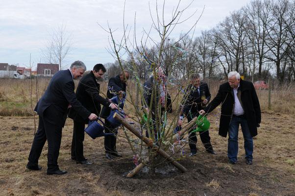 Die Bürgermeister der Langenhagener Partnerstädte und der freundschaftlich verbundenen Kommunen gießen den Freundschaftsbaum