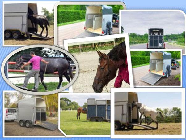 Hulp bij trailerladen in Noord-Holland.
