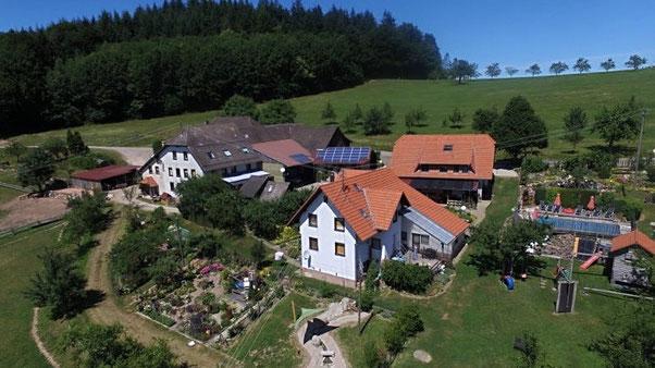 Bauernhof mit Tieren, Pool, Spielplatz,Streichelzoo und Liegewiese im Süd Schwarzwald
