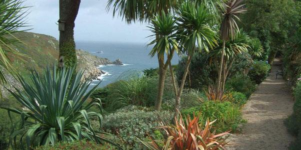 Cornwall Garten mit tropischen Pflanzen