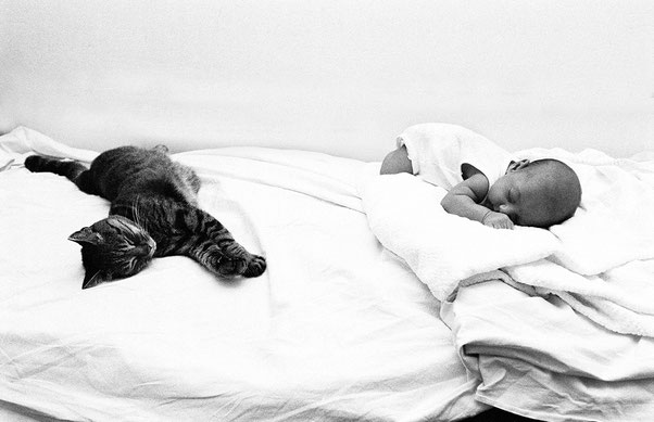 Photo by ISABELLA BALENA