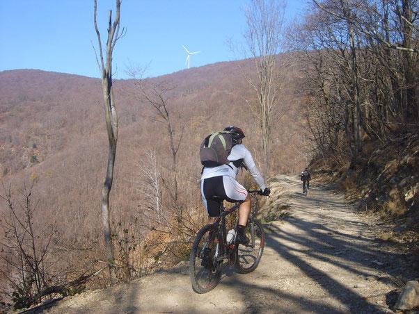 dopo 10 km di asfalto con pendenze a volte al limite del pedalabile, Nico ha  appreso che la meta si trova  lassù al ventolone!!...... perde la parola...poco dopo anche la pedalata!!