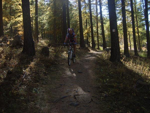 entriamo in un bellissimo bosco che ci conduce a Claviere