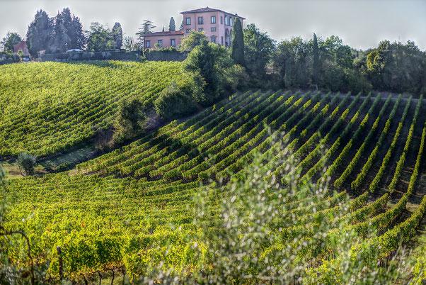 Villa Corliano Firenze Toscana Etesiaca itinerari di vino
