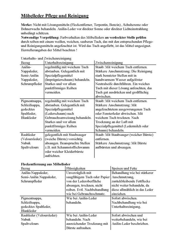 """Erste Seite der PDF """"Pflegetipps Leder"""""""