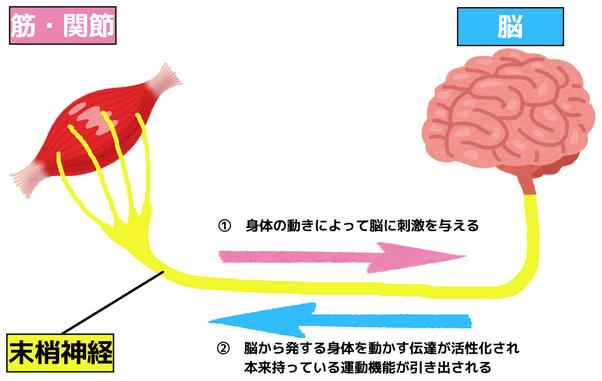 PNFの概要図