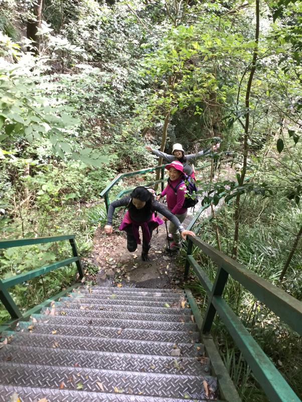 階段と岩肌を一気に登ります。