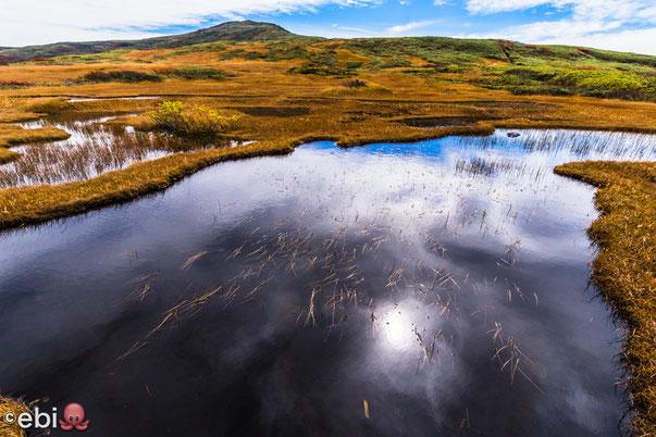 湿原と草紅葉と月山山頂