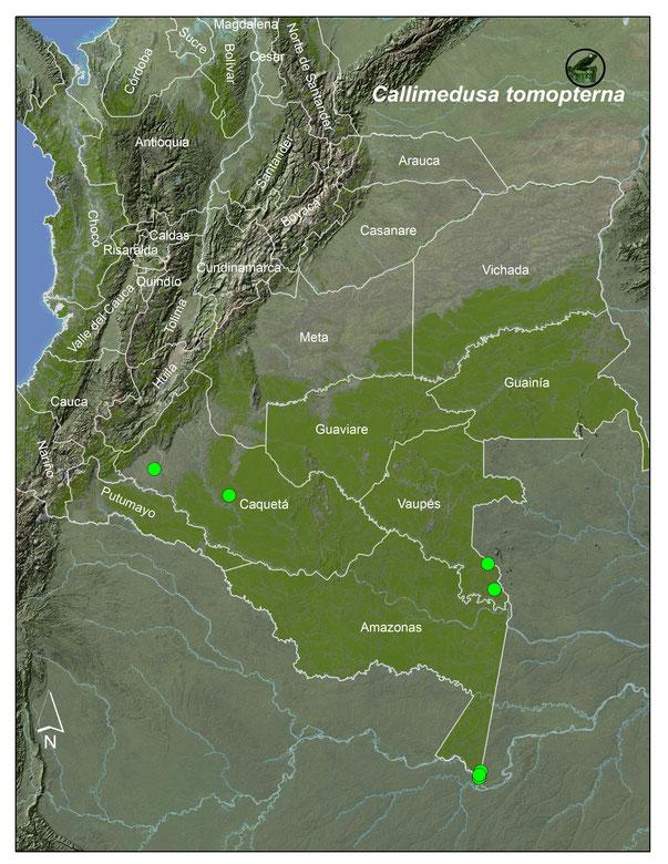 Mapa Callimedusa tompoterna-www.batrachia.com