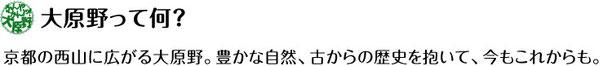 なんやかんや大原野ー京都・西山・大原野観光案内ー