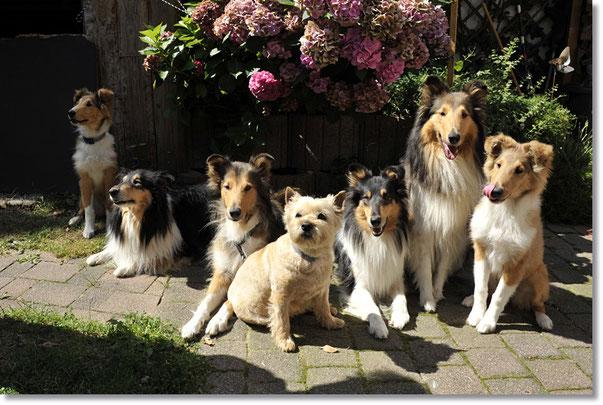 V. li.: Enea, Katie, Boots, Cellie, Djuli, Crispy, Elli