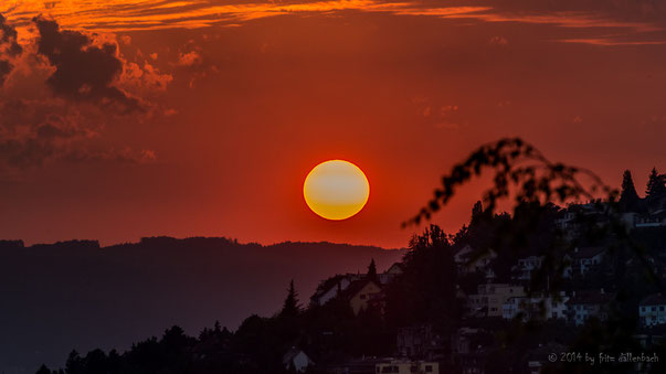 Sonne über der Waid