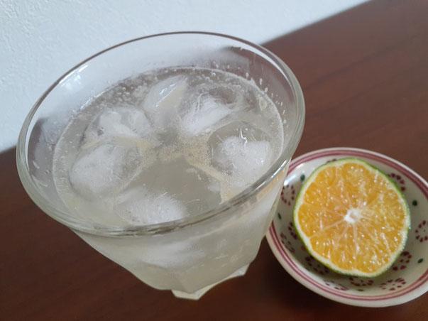 すだちサイズの摘果みかんで作ったチューハイ。果汁は苦味と酸味が強く、そのままでは飲みにくい。