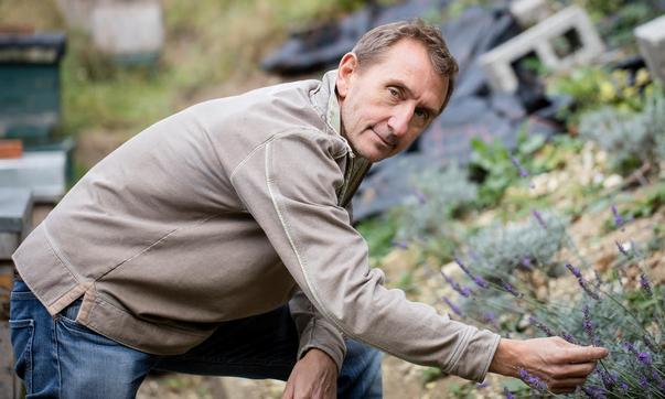 Professor Dave Goulson Brits bioloog en stichter van de  'Bumblebee Conservation Trust'.