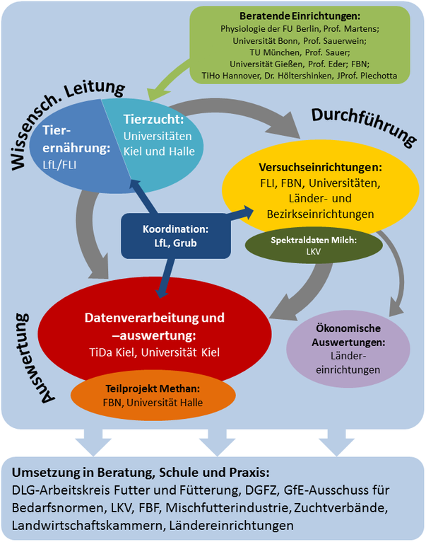 Schema Organisation von optiKuh