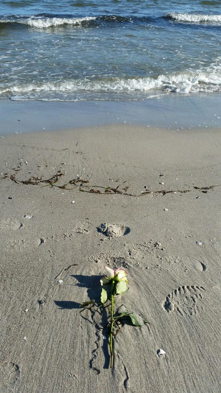 Heute am Strand