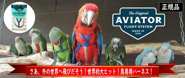 鳥用ハーネス アヴィエーター 装着簡単、超軽量、使用方法DVD付属(英語) Parrot University社製/Made in USA
