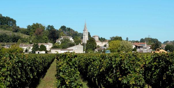 Le Fronsadais, territoire viticole près de Bordeaux