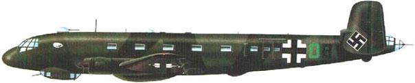 Junker Ju-290.