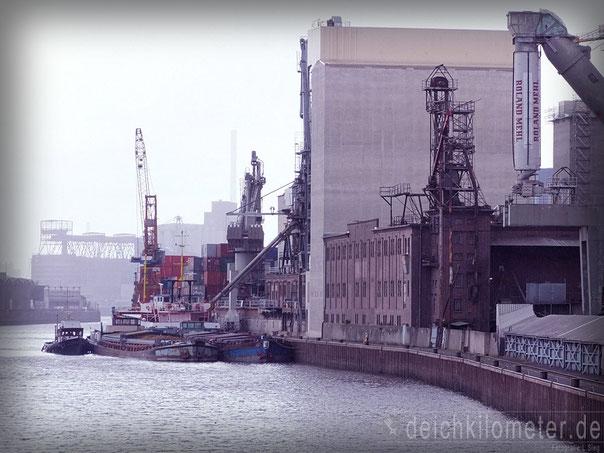 Möven Hafen Bremen Fotos Holzhafen