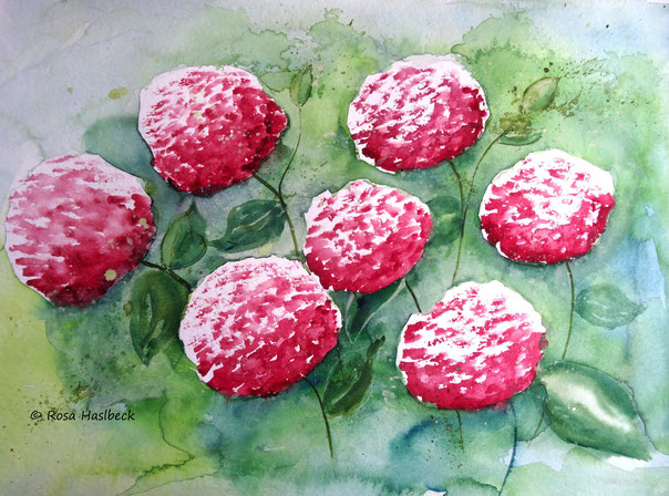 aquarell, blumenaquarell, blumenbild, hortensien, blumen, kunst, bild, kaufen