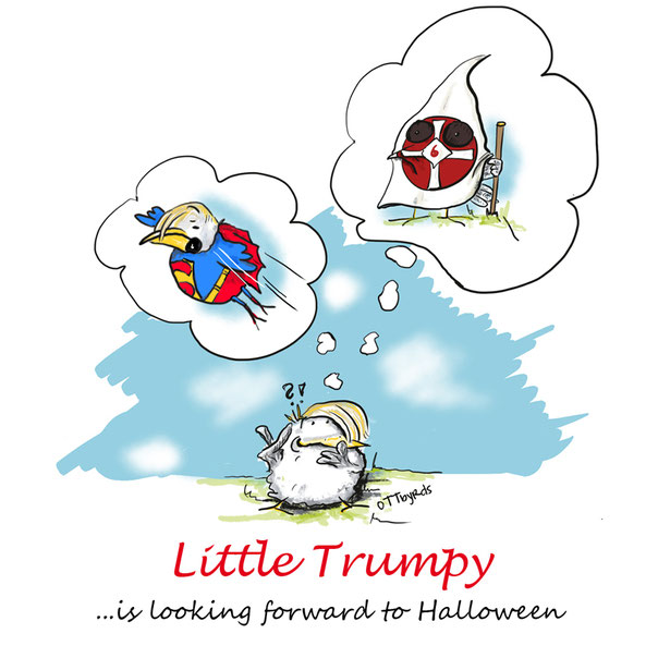 donald trump, halloween, superman, USA, rassist, rassismus, halloweenkostüme, halloweencostume,little trumpy, little stupid mam, ottbyrds