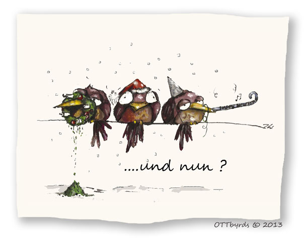 New Year,after New Year,Silvester,ottbyrds,ilka walter,schräge vögel