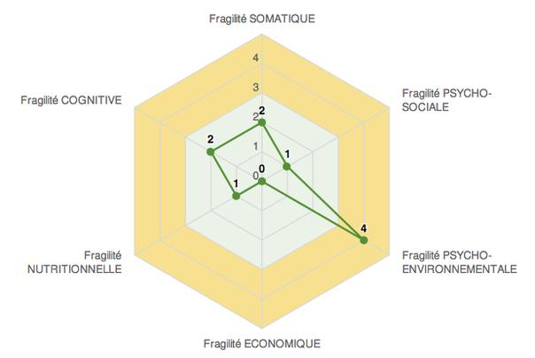 - Exemple d'Etoile de la fragilité, Cercle de la perte d'autonomie (Source : CNEFs) -