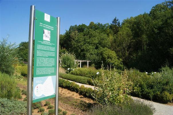 Der Bibelgarten im Gesundheitsgarten Retzbach