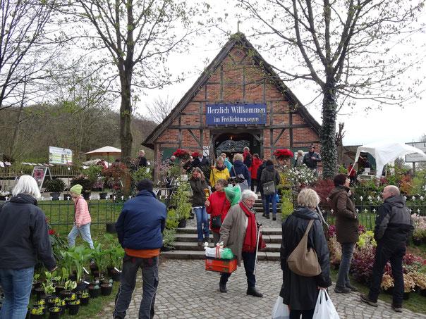 Bild: Buntes Treiben auf dem Pflanzenmarkt im Freilichtmuseum am Kiekeberg