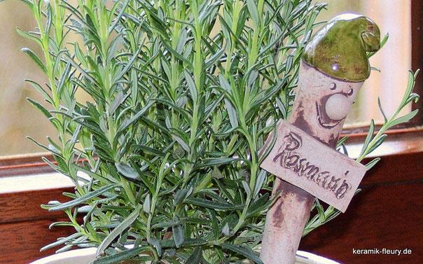 Kräuter im Garten: Rosmarin