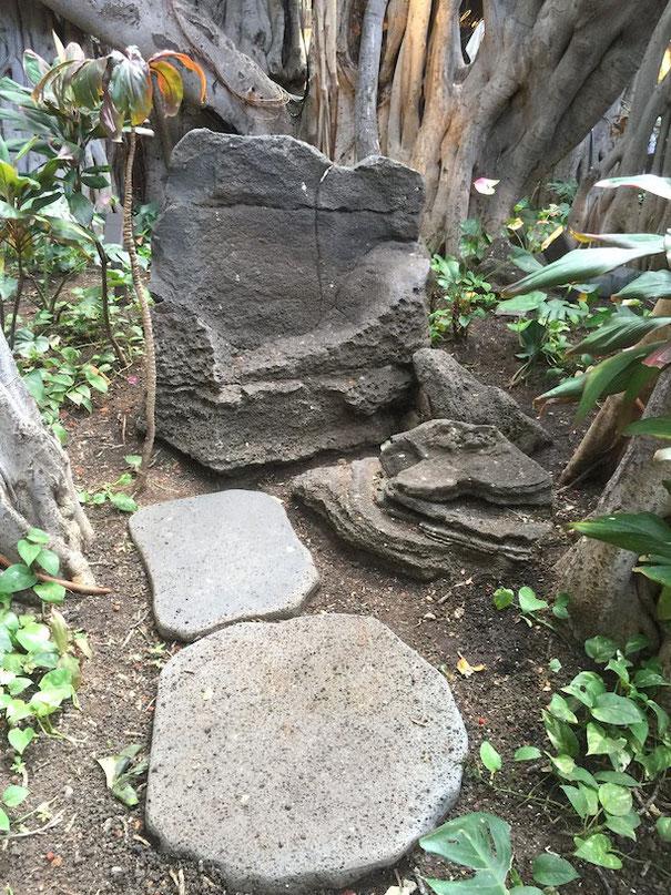 ツリーハウスの外には石のベンチがある