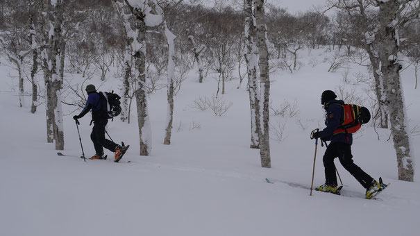 touring in Nito, Niseko Backcountry