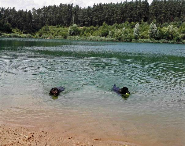 Der Badesee ist im Sommer der absolute Lieblingsort