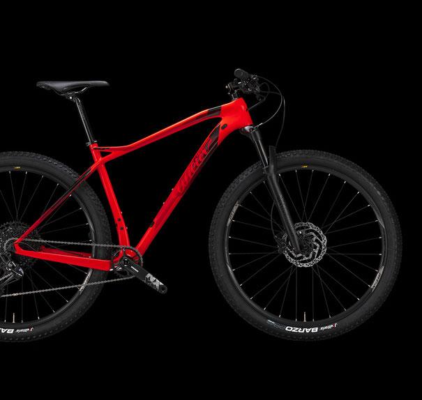 Wilier 101X Italian Cycle Experience