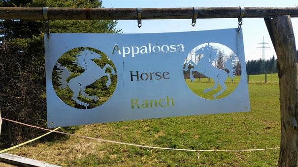 Heute leider keine Pferde auf der Ranch...