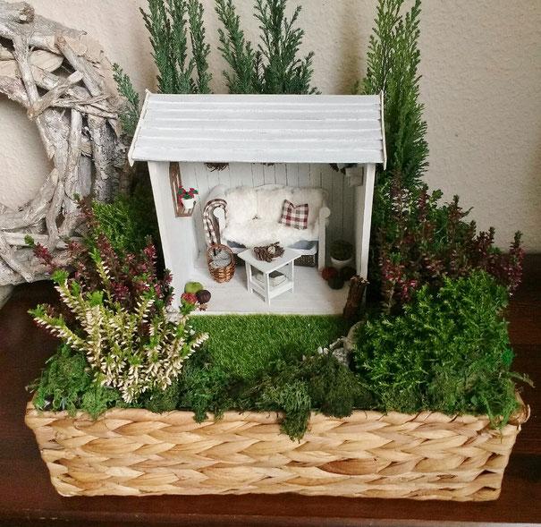 Minigarten mit echten Pflanzen