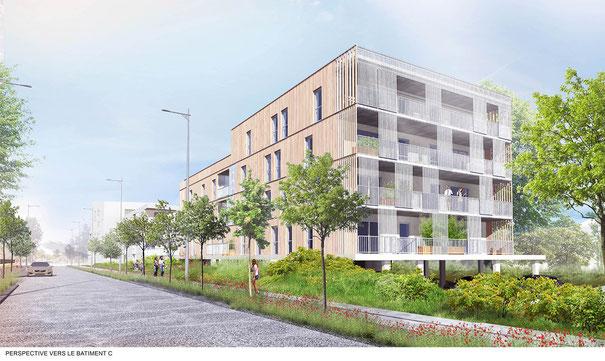 Esquisse du projet d'habitat participatif des Petits Ruisseaux - [vazistas] architectes